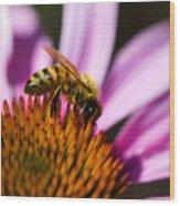 Bee Feasting Wood Print
