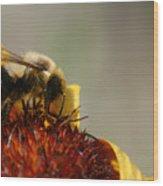 Bee Four Wood Print