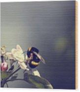 Bee Happy Wood Print by Gabriel Calahorra