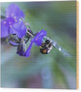 Bee Harmony Wood Print by Mary Lou Chmura