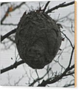 Bee Hive Wood Print