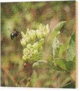 Bee In Flight Wood Print