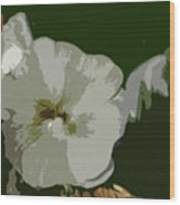 Bee In The Hollyhock Wood Print