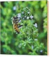 Bee Is In The Oregano Wood Print