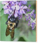 Bee-lieve Wood Print