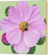 Bee-line 1 Wood Print