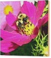 Bee-line 3 Wood Print