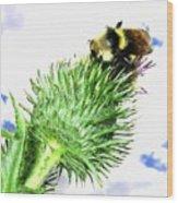 Bee-line 4 Wood Print