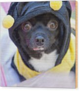 Chihuahua Says Bee Mine Wood Print