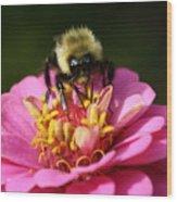 Bee Nice Wood Print
