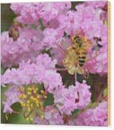 Bee On A Crepe Myrtle Flower Wood Print