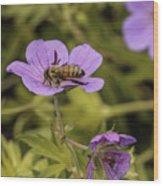 Bee On A Purple Flower Wood Print