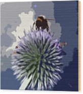 Bee On An Allium Wood Print