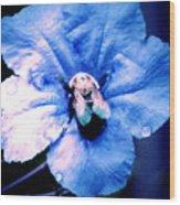 Bee On Blue Flower Wood Print