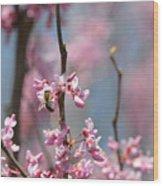 Bee On Pink Bloom Wood Print