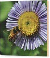 Bee On Purple Petals Wood Print