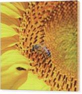 Bee On Sunflower Summer Nature Scene Wood Print