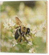 Bee On Top Of Things Wood Print