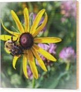 Bee On Yellow Coneflower Wood Print
