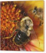 Bee One Wood Print