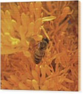 Bee Positive Wood Print