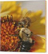 Bee Two Wood Print