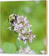 Bee Wings Wood Print