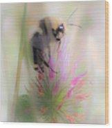 Bee2 Wood Print