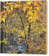 Beech Leaves Birch River Wood Print by Thomas R Fletcher