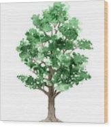 Beech Tree Minimalist Watercolor Painting Wood Print