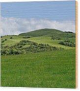 Beecraigs Hills. Wood Print