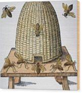 Beehive, 1658 Wood Print