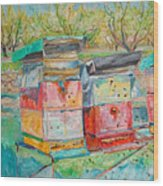 Beehives In Orchard Wood Print