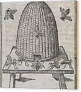 Bees And Beehive, 17th Century Artwork Wood Print