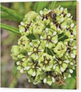 Bees Pollinating Wood Print