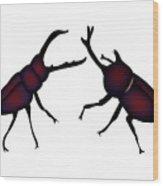 Beetle And Stag Beetle Wood Print