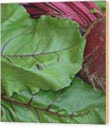 Beetroot Wood Print