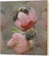 Beeware-2 Wood Print