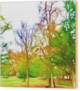 Beginning Of Autumn Wood Print