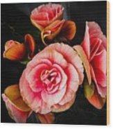 Begonia In Pink Wood Print