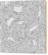 Behind Closed Eyes Wood Print