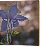 Behind Columbine Wood Print