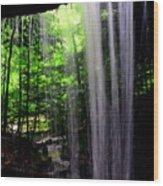 Behind The Falls Wood Print