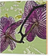 Behind The Orchids Wood Print by Gwyn Newcombe