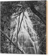 Behind The Tree-bw Wood Print
