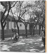 Beijing City 10 Wood Print