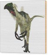 Beipiaosaurus Dinosaur On White Wood Print