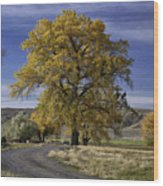 Belfry Fall Landscape 5 Wood Print