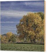 Belfry Fall Landscape 7 Wood Print by Roger Snyder