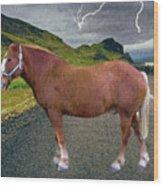 Belgian Horse Wood Print